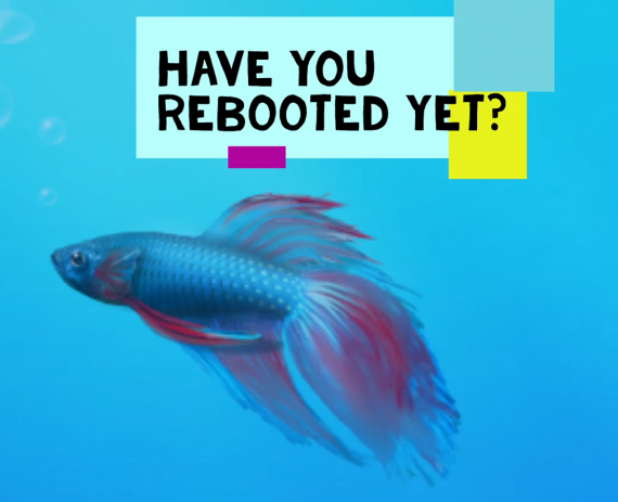 Have you rebooted?